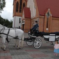 Paardkoets in Warschau