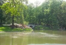 Een zonnige dag in het koninklijke Lazienki park