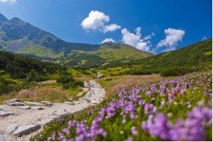 polish mountains